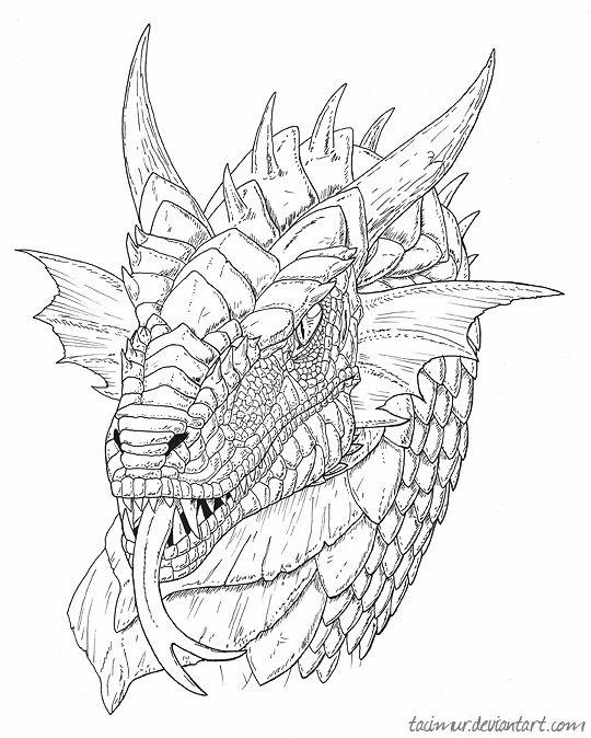 Black and White Dragon Drawings - Bing images | Boyish coloring ...