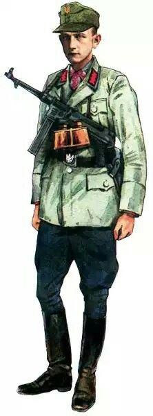 Ukrainian UPA soldier, west 1945, pin by Paolo Marzioli