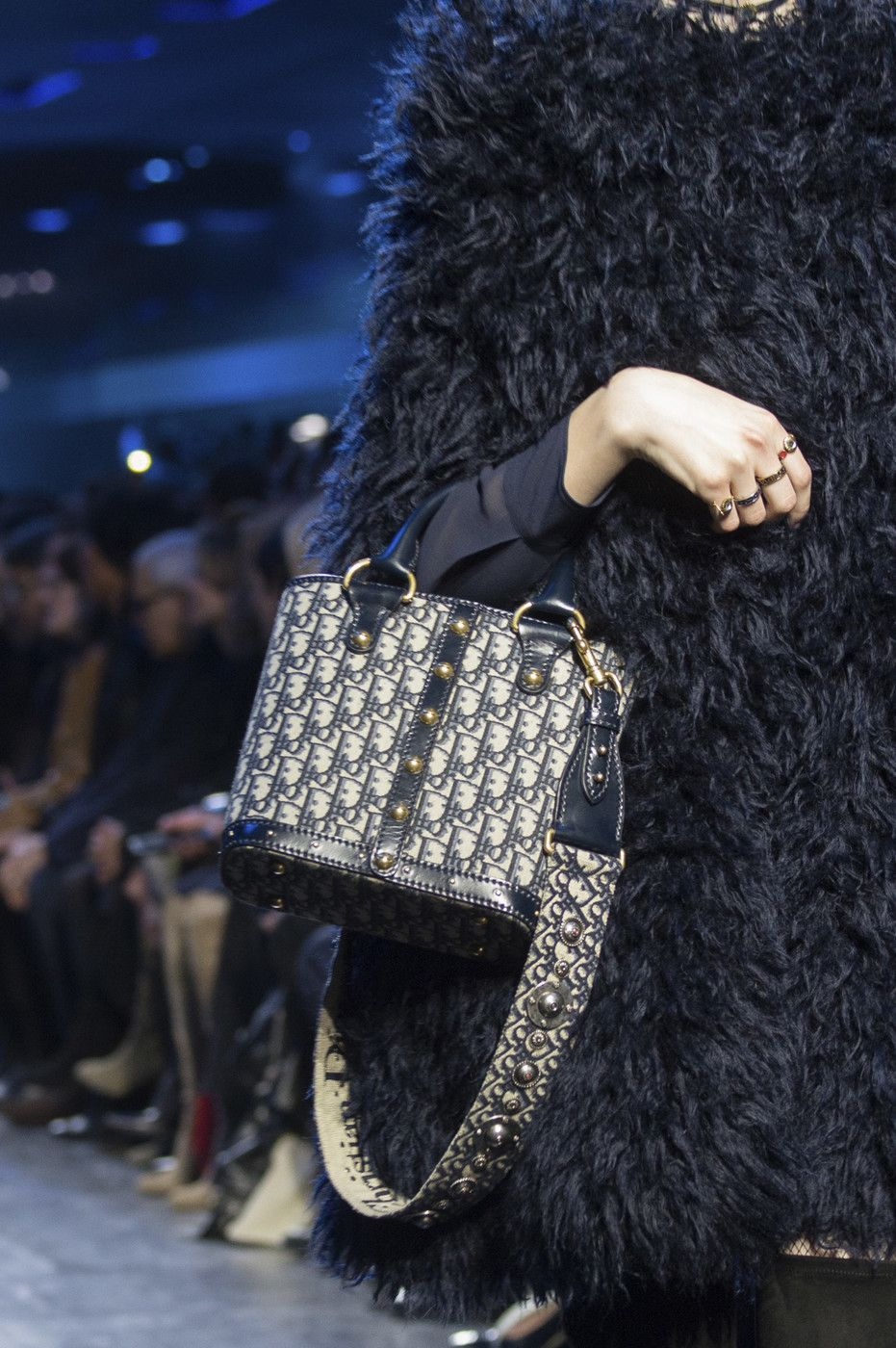 Christian Dior at Paris Fall 2017 (Details)