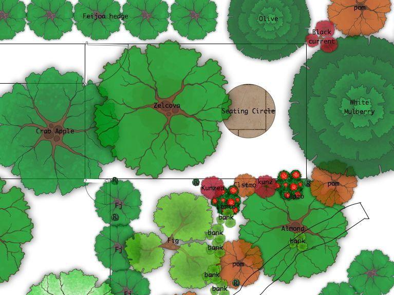 Food Forest Design Time | Garden | Pinterest | Wald, Design Und Essen Garten Landschaft Gestaltung Wald