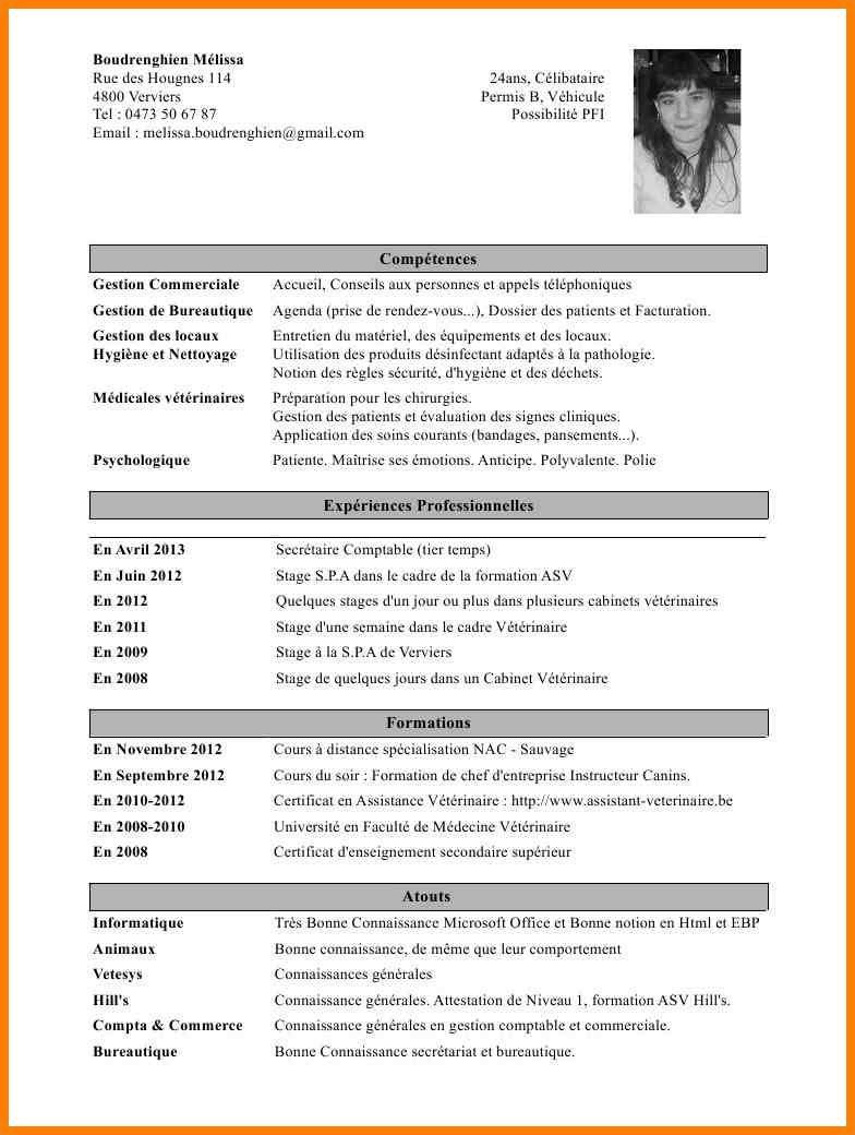 Cv Gratuit Telecharger Original Cv Gratuit Exemple De Cv Original Mise En Page Cv