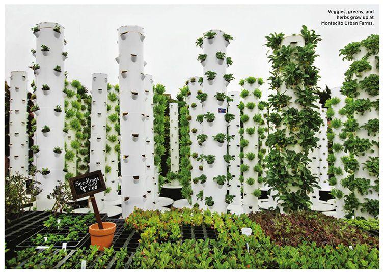 Tower Gardens at Montecito Farms Tower garden, Amazing