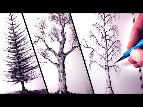 How To Draw Trees Lethalchris Drawing Realistic Drawings Tree Drawing Landscape Drawings
