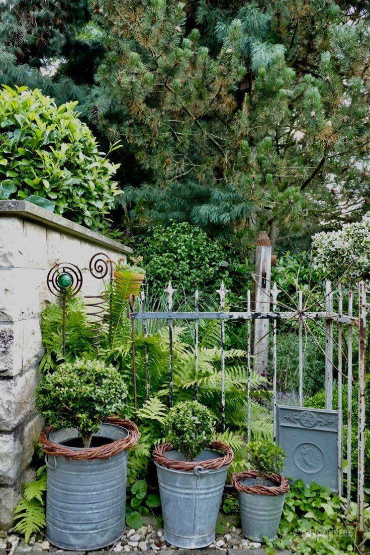 Fotostrecke Impressionen Juli 2017 Fotostrecke Impressionen Juli In 2020 Australischer Garten Garten Gartenkunst