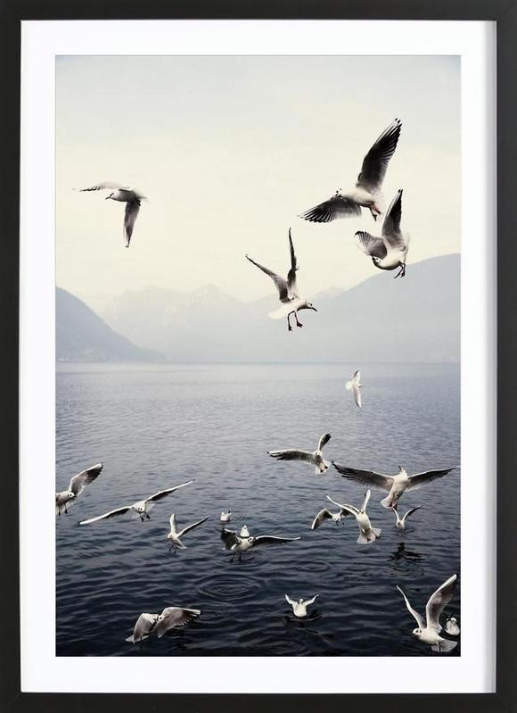 seagulls laura palm gerahmtes poster bilder in 2018 pinterest poster bilder und juniqe. Black Bedroom Furniture Sets. Home Design Ideas