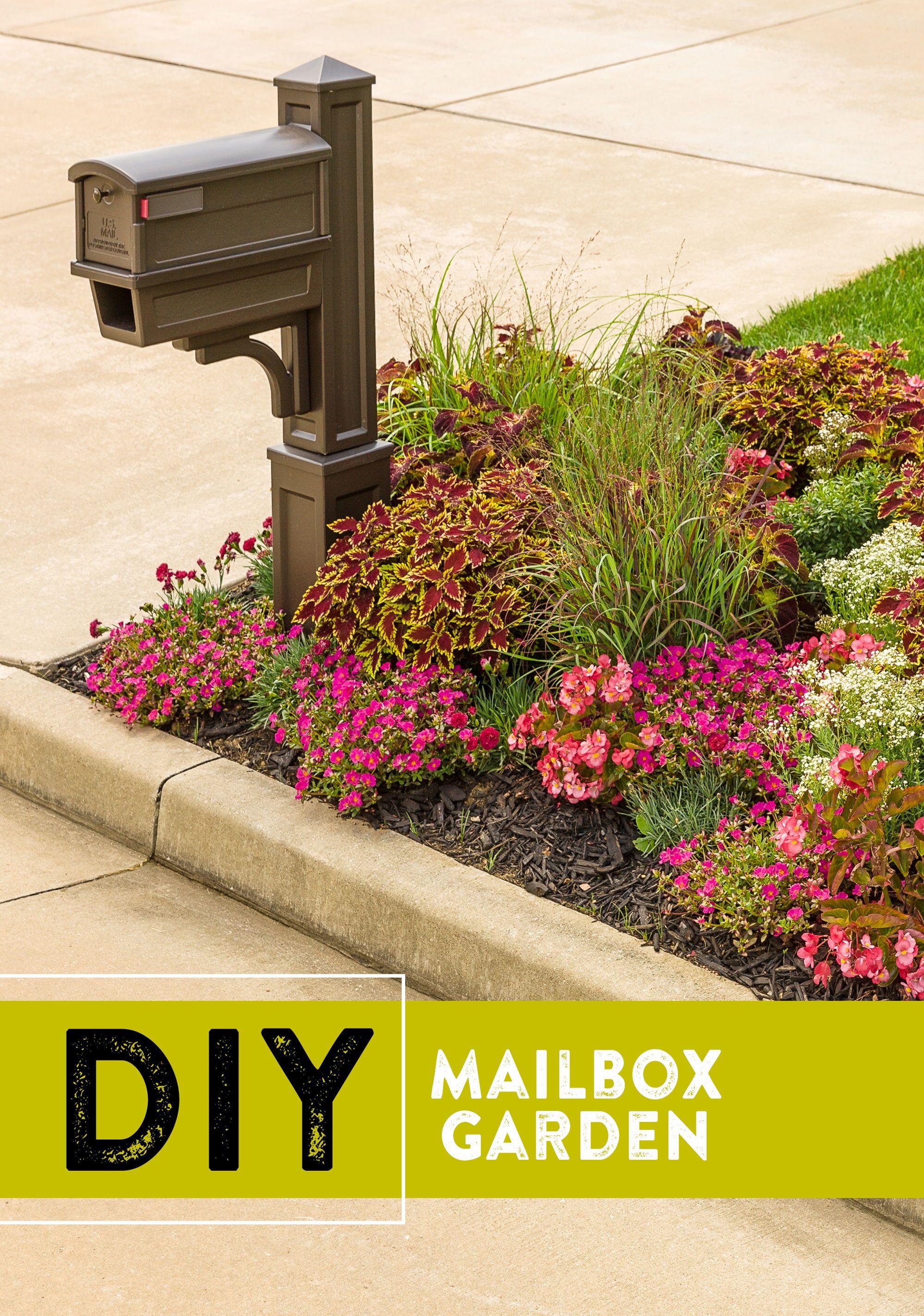 mailbox-garden - Proven Beauty