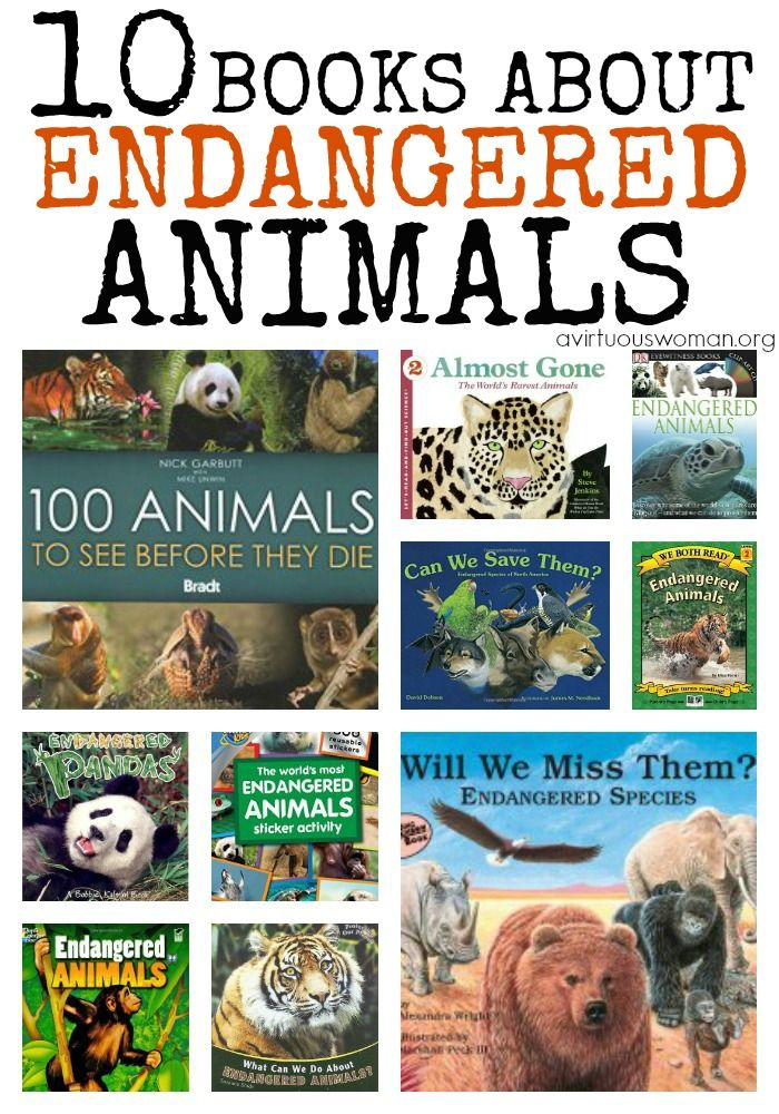 10 Books About Endangered Animals A Storybook Day Endangered Species Activities Endangered Animals Endangered Animals Activities
