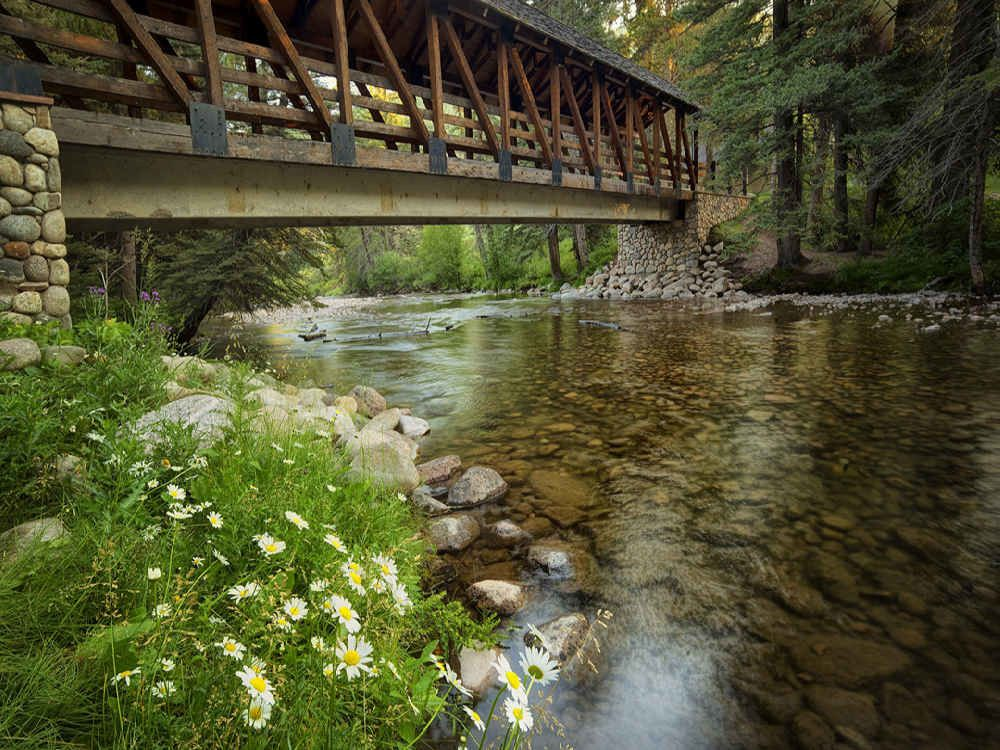 Covered Footbridge and Daisy Flowers with Gore Creek Gerald Ford Park Vail Colorado by Dennis Frates http://ift.tt/22cPBje #standard #streams #photographers #dennisfrates #bridge #flowers #colorado #daisy #coveredbridge #footbridge #geraldfordpark #gorecreek #vail #like4like #picoftheday #photooftheday #canvasprints #rolledcanvas #gallerywrapped #prints #follow #like4follow