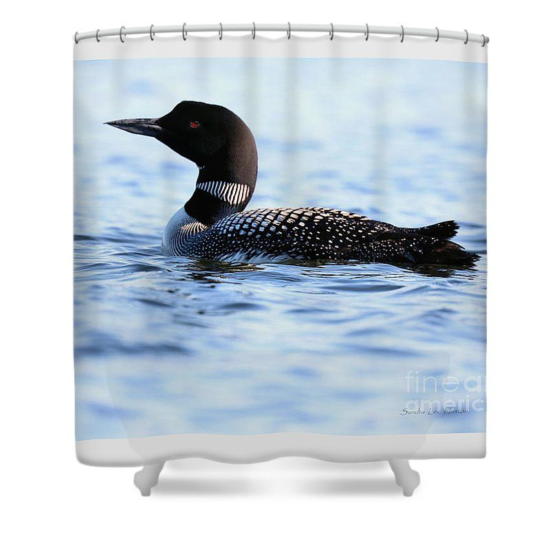 Loon In Rough Waters Shower Curtain For Sale By Sandra Huston