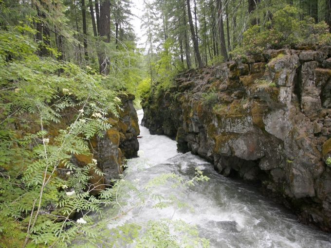 The Rogue Gorge features the river churning through