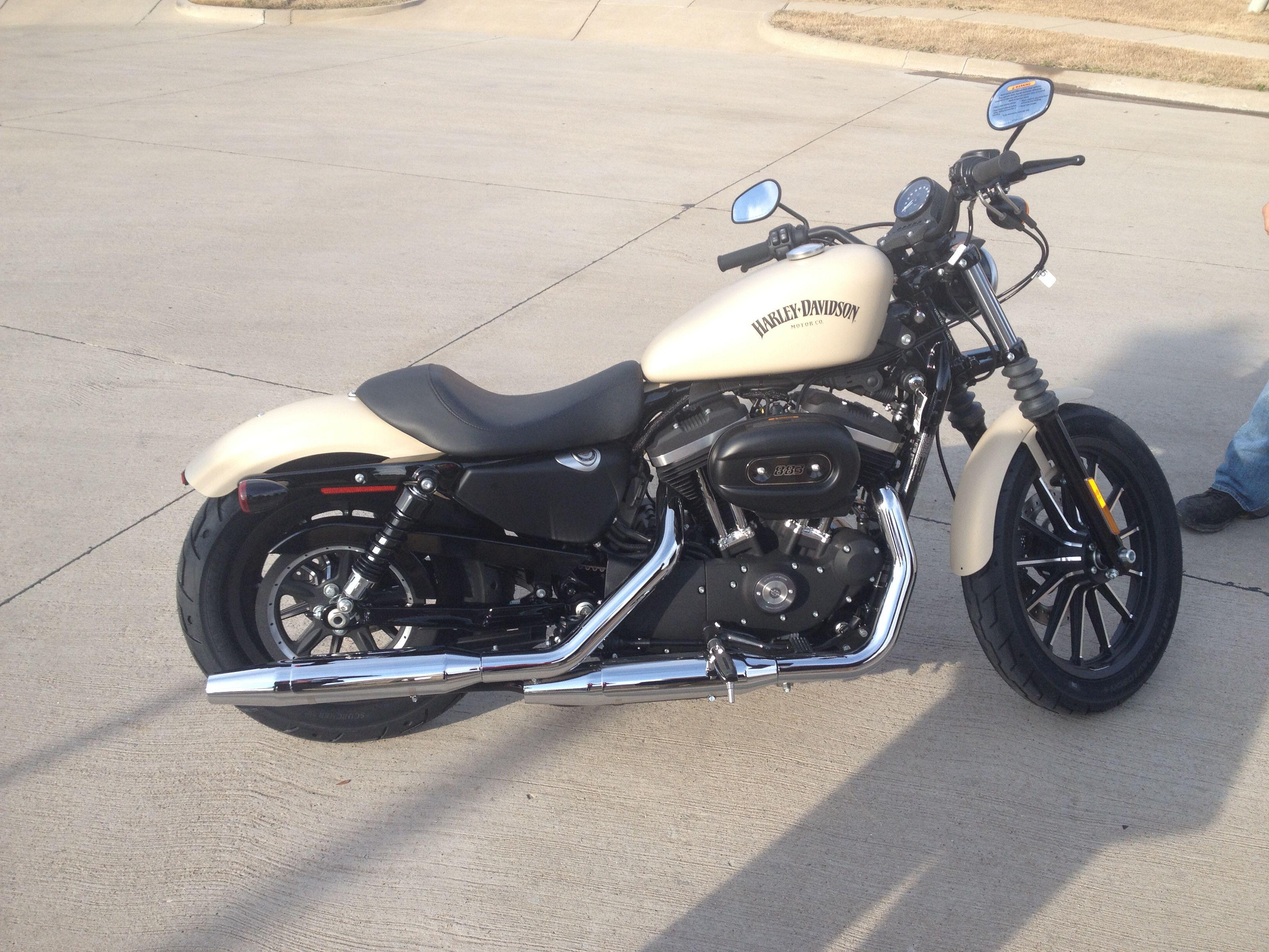 Harley Davidson Iron 883 Sand Camo