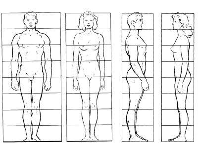 Esq Cuerpo Jpeg Imatge Jpeg 400 307 Pixels Cuerpo Humano Dibujo Cuerpo Humano Dibujo Cuerpo