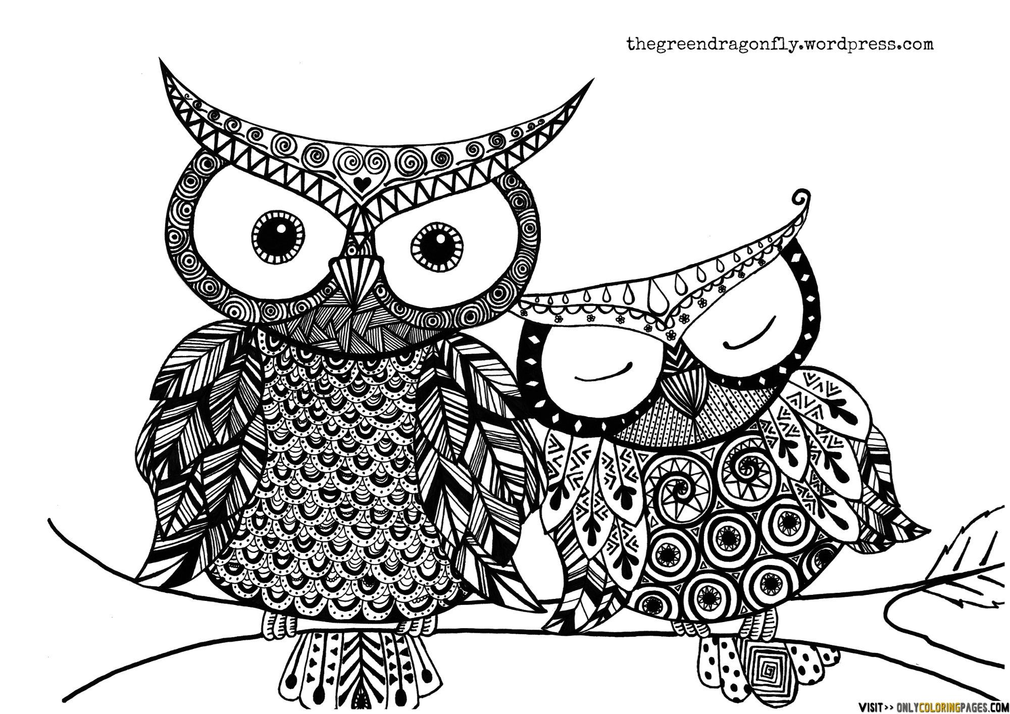 Owl Coloring Pages Printable Free Online Sheets For Kids Get The Latest Images Favorite