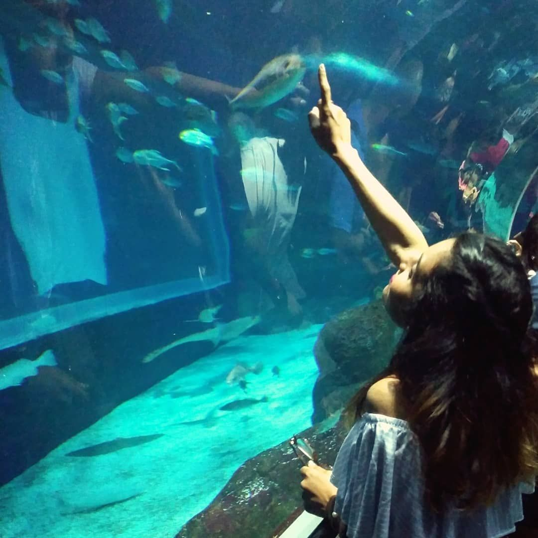Um verdadeiro amor por aquários 😅 🐠 💕 #AquaRio #riodejaneiro #rj #errejota #rio40graus #turistando #trip #travelphotography #aquarium…