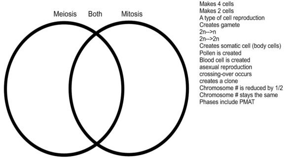 Venn Diagram Meiosis Vs Mitosis Pic Teaching Biology Mitosis Meiosis