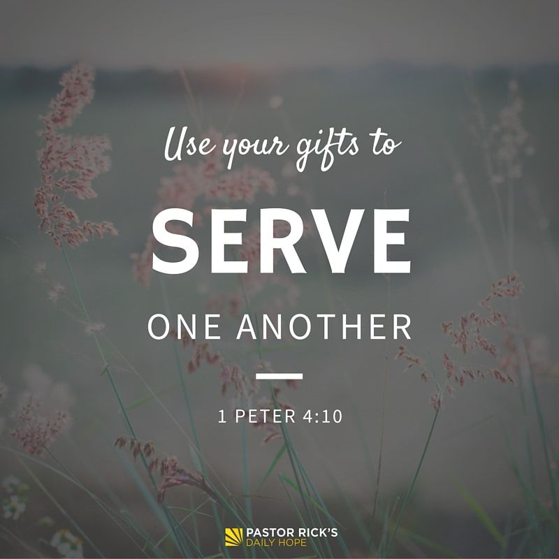 The bible says in 1 peter 410 god has given each of you a gift the bible says in 1 peter god has given each of you a gift from his great variety of spiritual gifts use them well to serve one another nlt negle Gallery