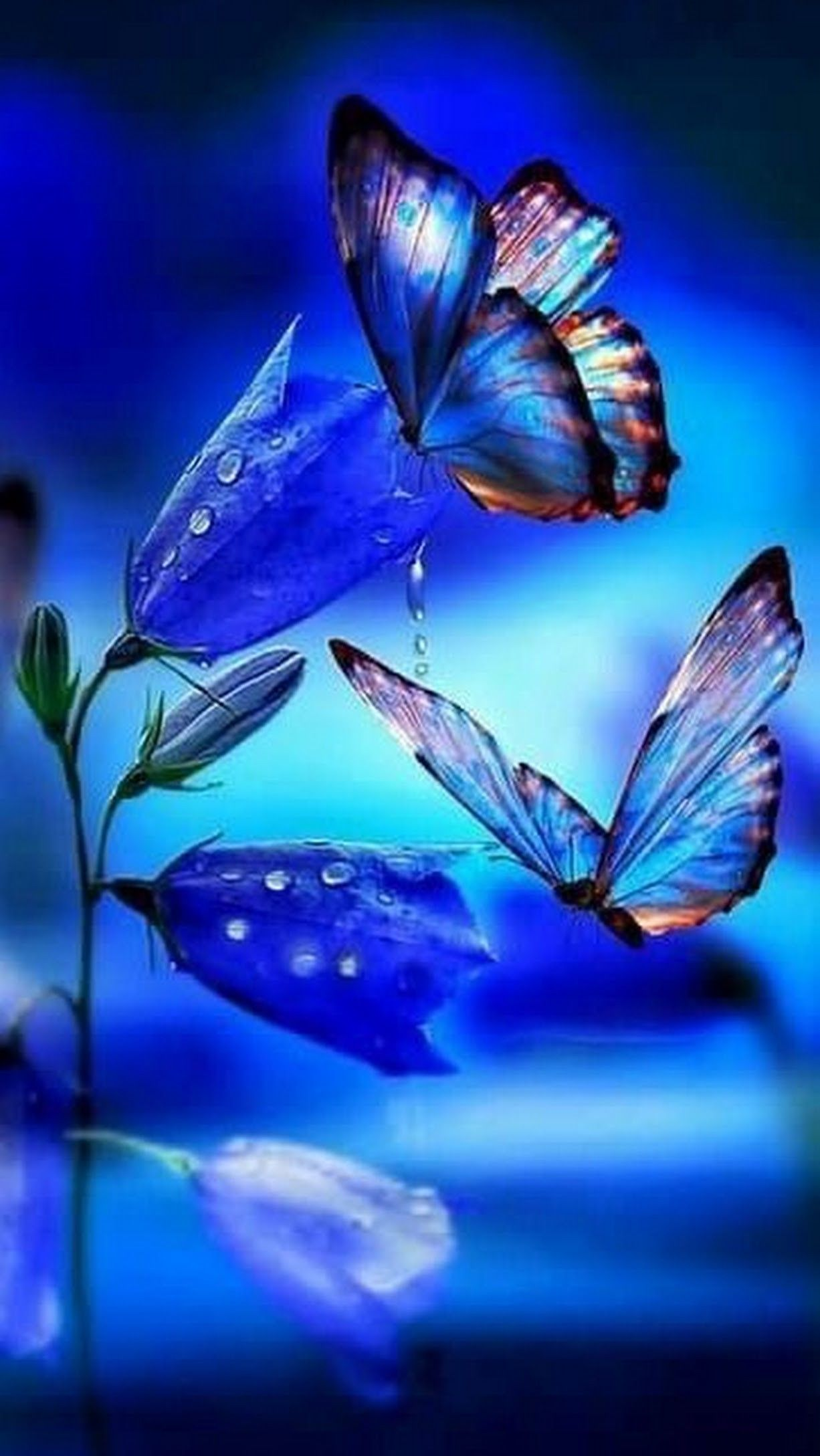 Butterfly Ringtones And Wallpapers Free By Zedge Butterfly Wallpaper Iphone Butterfly Wallpaper Backgrounds Beautiful Nature Wallpaper
