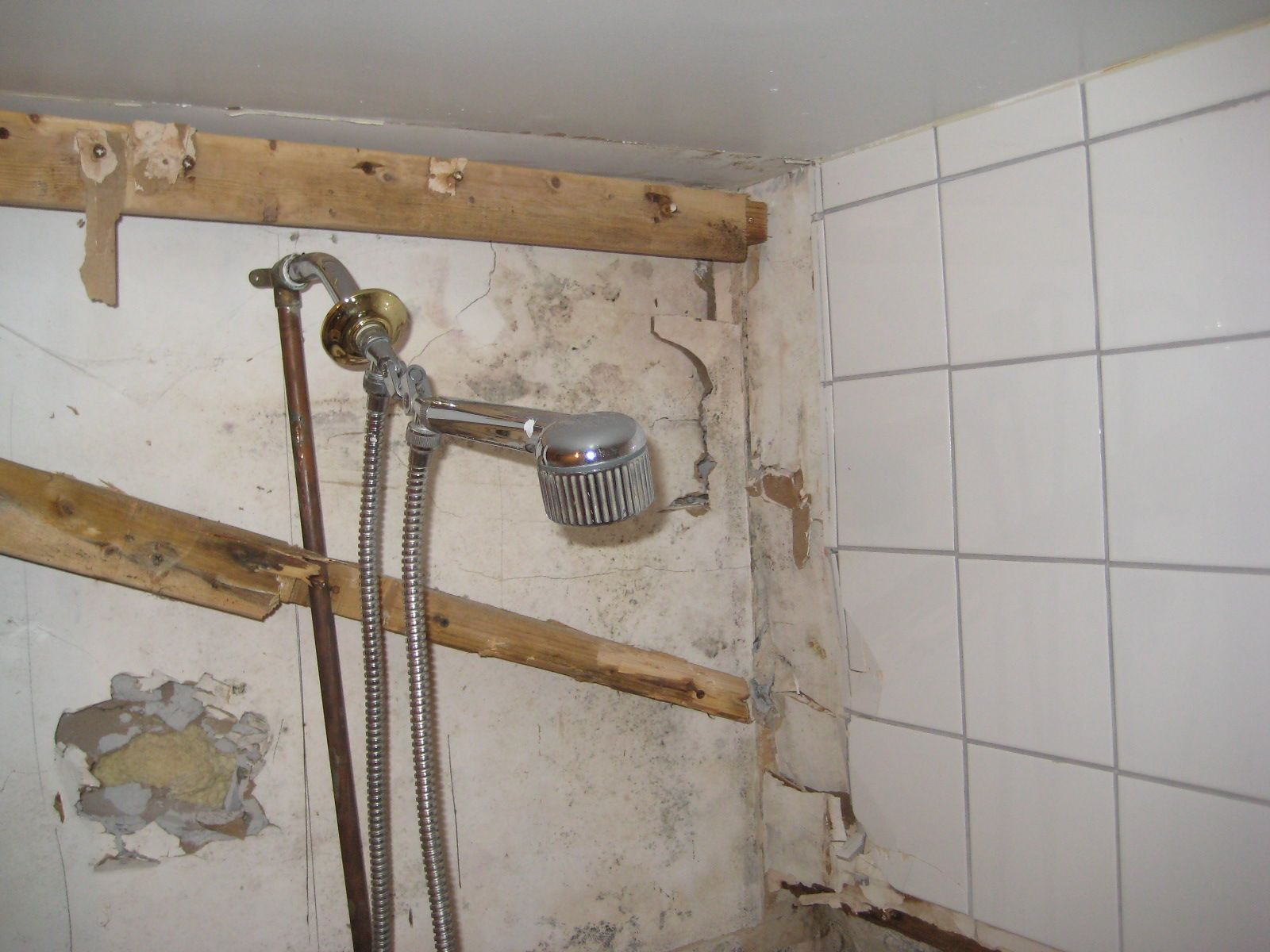 Black Mold Growing Behind The Bathroom Wall Because A Bathroom Is Moisture Rich It S A Common Place For Mold To Spre Mold Remediation Mold And Mildew Molding