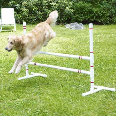 How To Build A Diy Dog Agility Course Dog Playground Dog