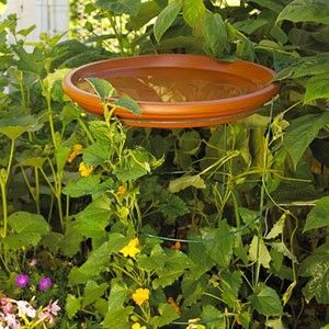 Terra Cotta Saucer On Upside Down Tomato Cage By Janell 400 x 300