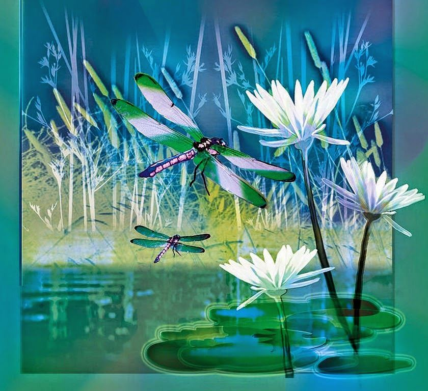 Cuadros modernos pinturas dise os varios de mariposas y - Disenos de cuadros ...
