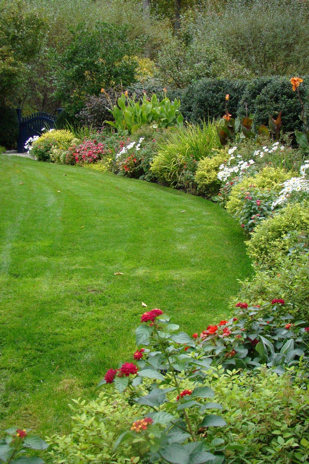 how to choose plants as landscape border ideas plants landscaping