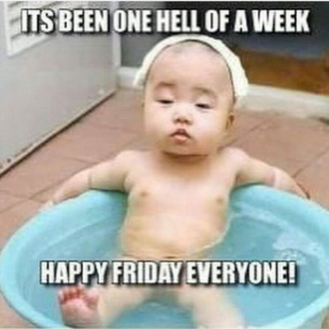 Happy Friday Everyone Funny Friday Memes Friday Funny Pictures Happy Friday Humour