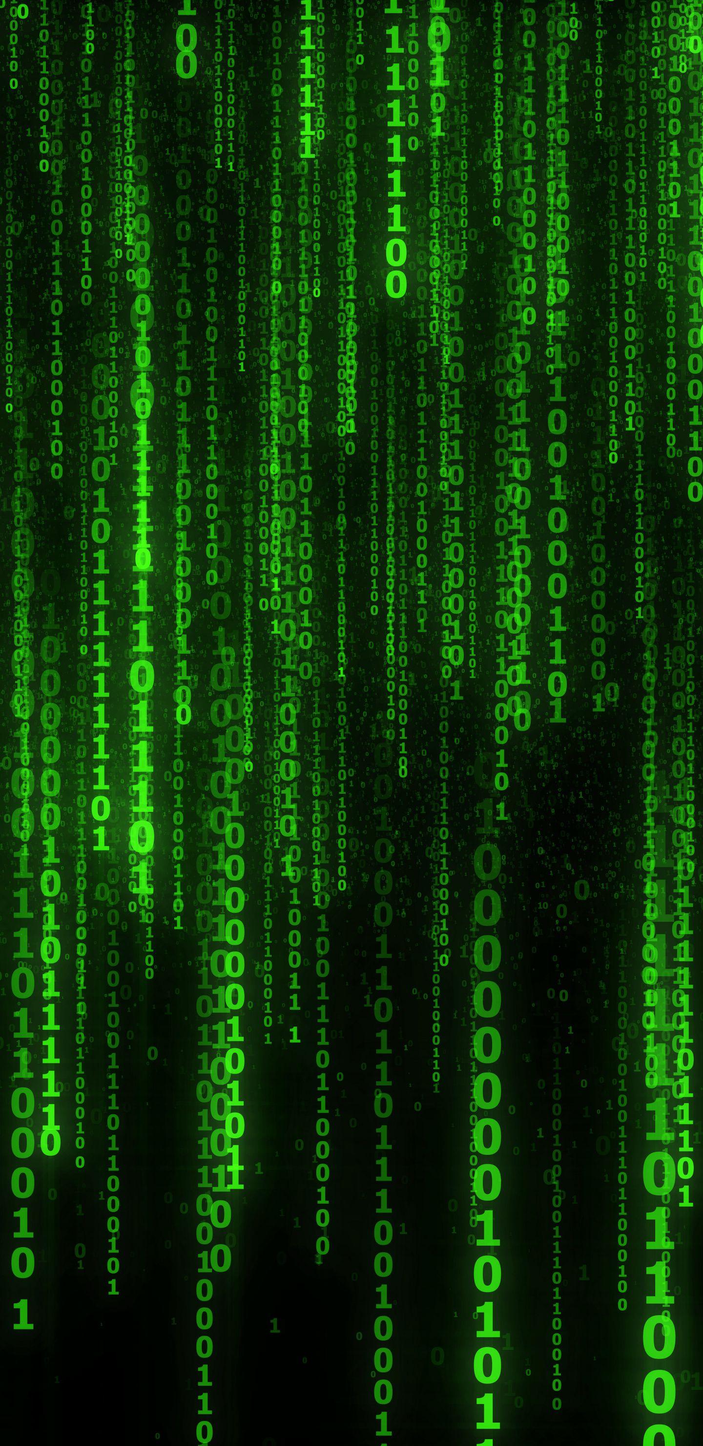 1440x2960 Matrix code, numbers, green wallpaper Papel de