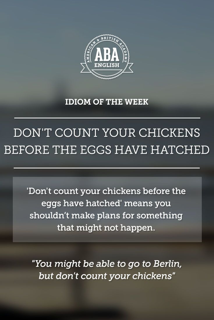 English Idiom Don T Count Your Chickens Before The Eggs Have