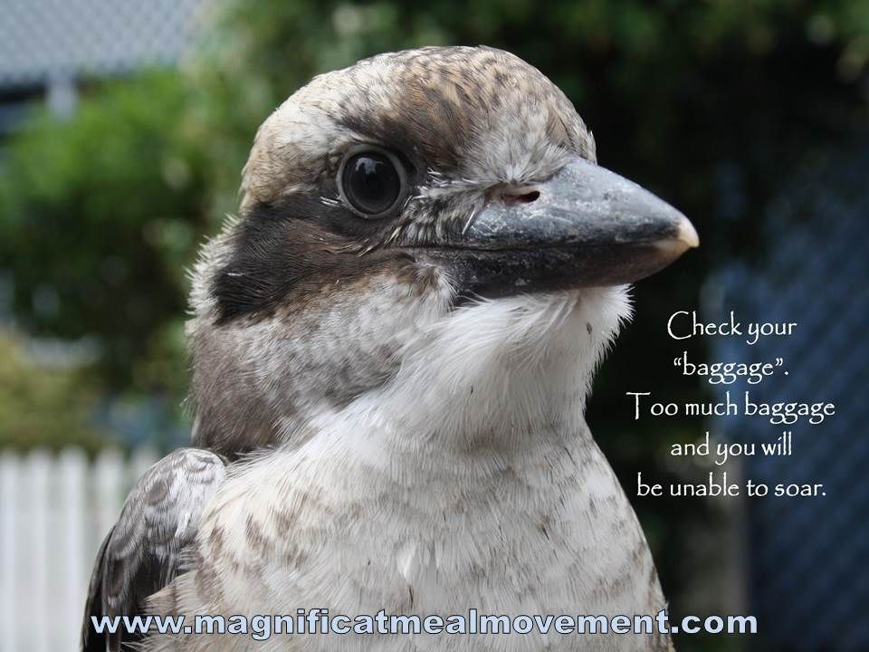"""""""Check your """"baggage' Too much baggage and you will be unable to soar"""".- 'Riding Into The Future' a collection of joy filled and blessing quotes available from www.magnificatmealmovement.com"""