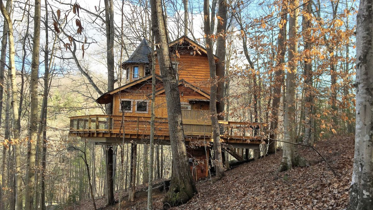 Retreat To A Treehouse In Asheville Nc Tree House