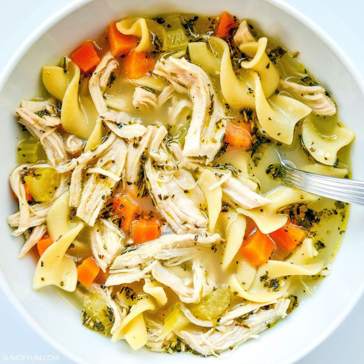 best homemade easy instant pot chicken noodle soup with