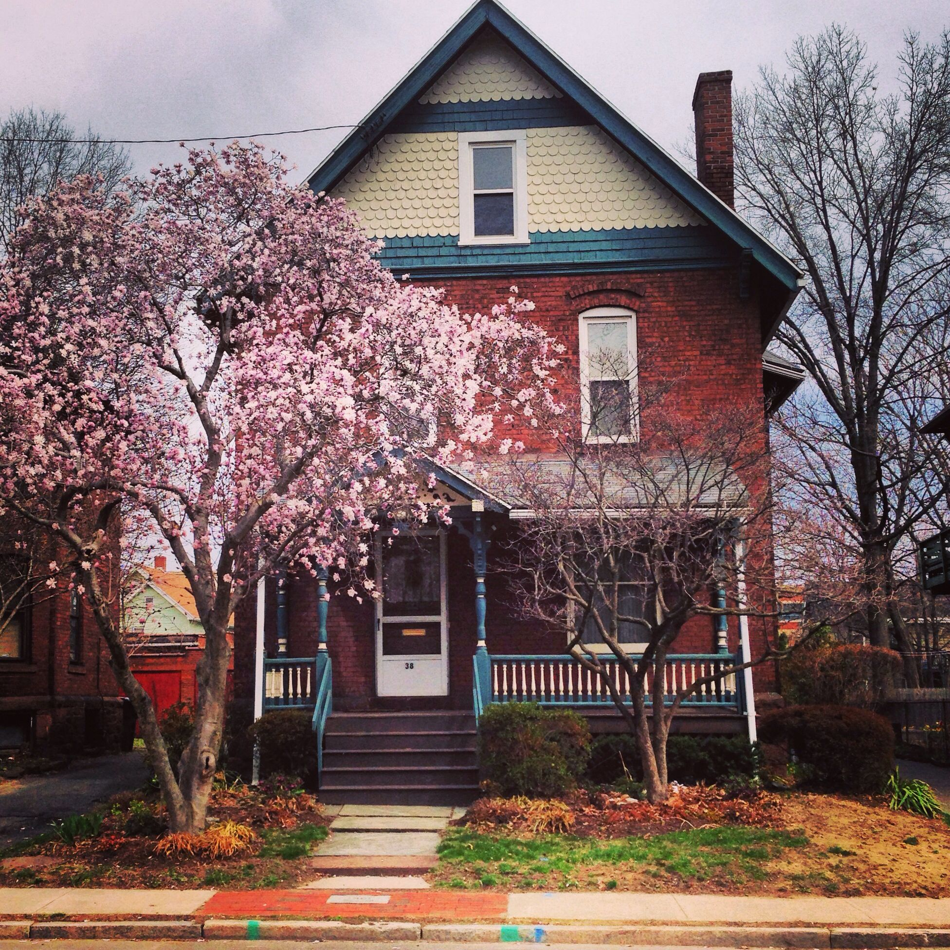 Beautiful Cherry Blossom Tree In The Front Yard Compliments The Lovely Home Beautiful Landscapes My Dream Home House Styles