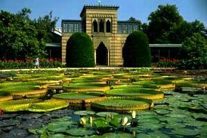 Stuttgart, Werner, Botanical Gardens, Berlin, Tourism, Deutsch