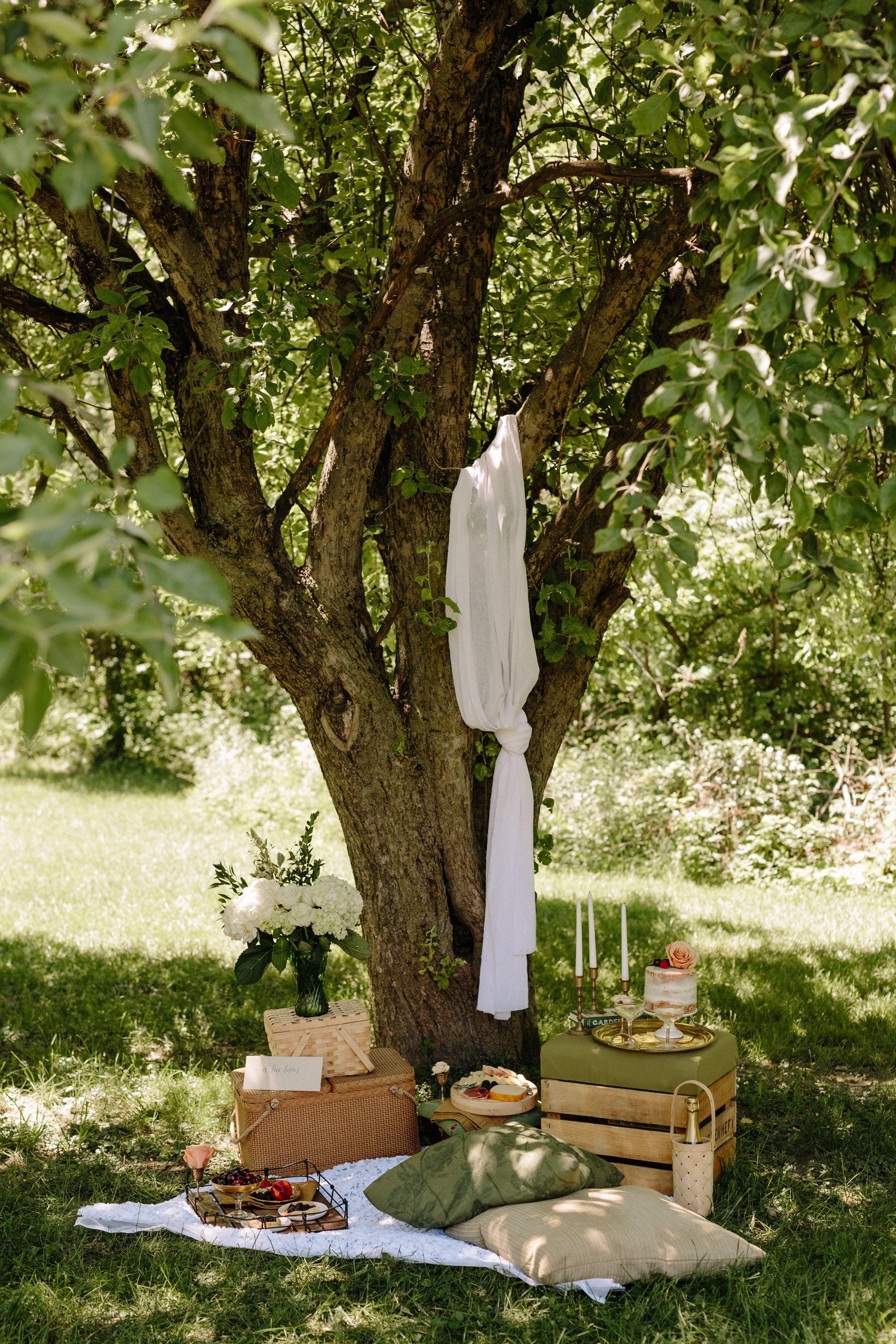 styled intimate picnic u2013 engagement picnic u2013 proposal picnic