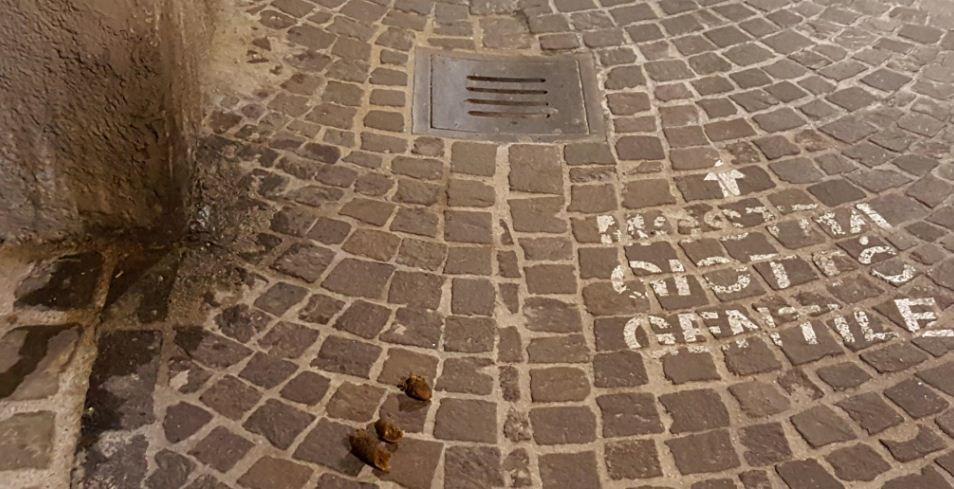 Fabriano  Ricordini non profumati davanti negozi e abitazioniFabriano  Sicuramente le gr https://t.co/wx8WhvVmNE https://t.co/VsJH5JWkD8