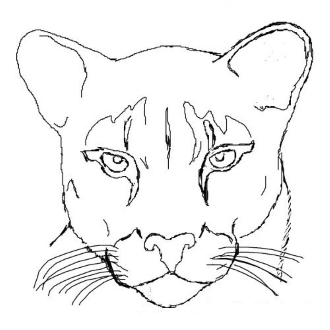 Http Colorings Info Traceable Pictures Of Animals Lion Coloring Pages The Art Sherpa Lion Art