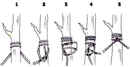 How To Hang A Hammock From A Tree Lazy Bandido Hammock Camping Hammock Knots
