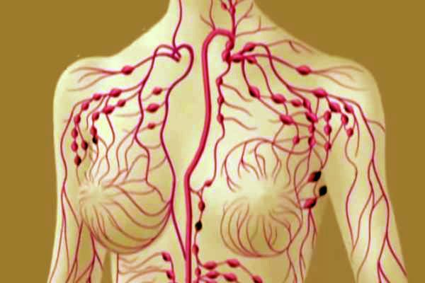 detoxifiere limfatica naturist