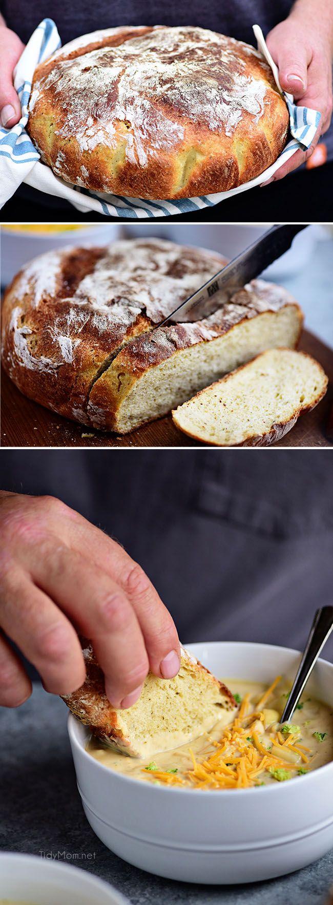 Sourdough No Knead Dutch Oven Bread | Recipe | Dutch oven ...