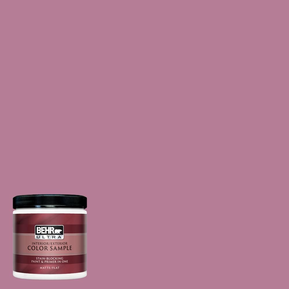 Behr Ultra 8 Oz M130 5 Cabaret Matte Interior Exterior Paint And Primer In One Sample Behr Marquee Paint Behr Marquee Exterior Paint