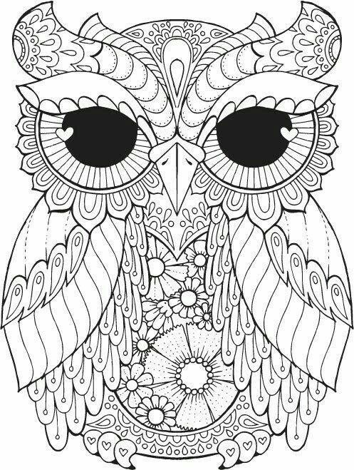 Pin Ot Polzovatelya Katrina Pierce Na Doske Printables Owl Coloring Pages Coloring Canvas I Adult Coloring