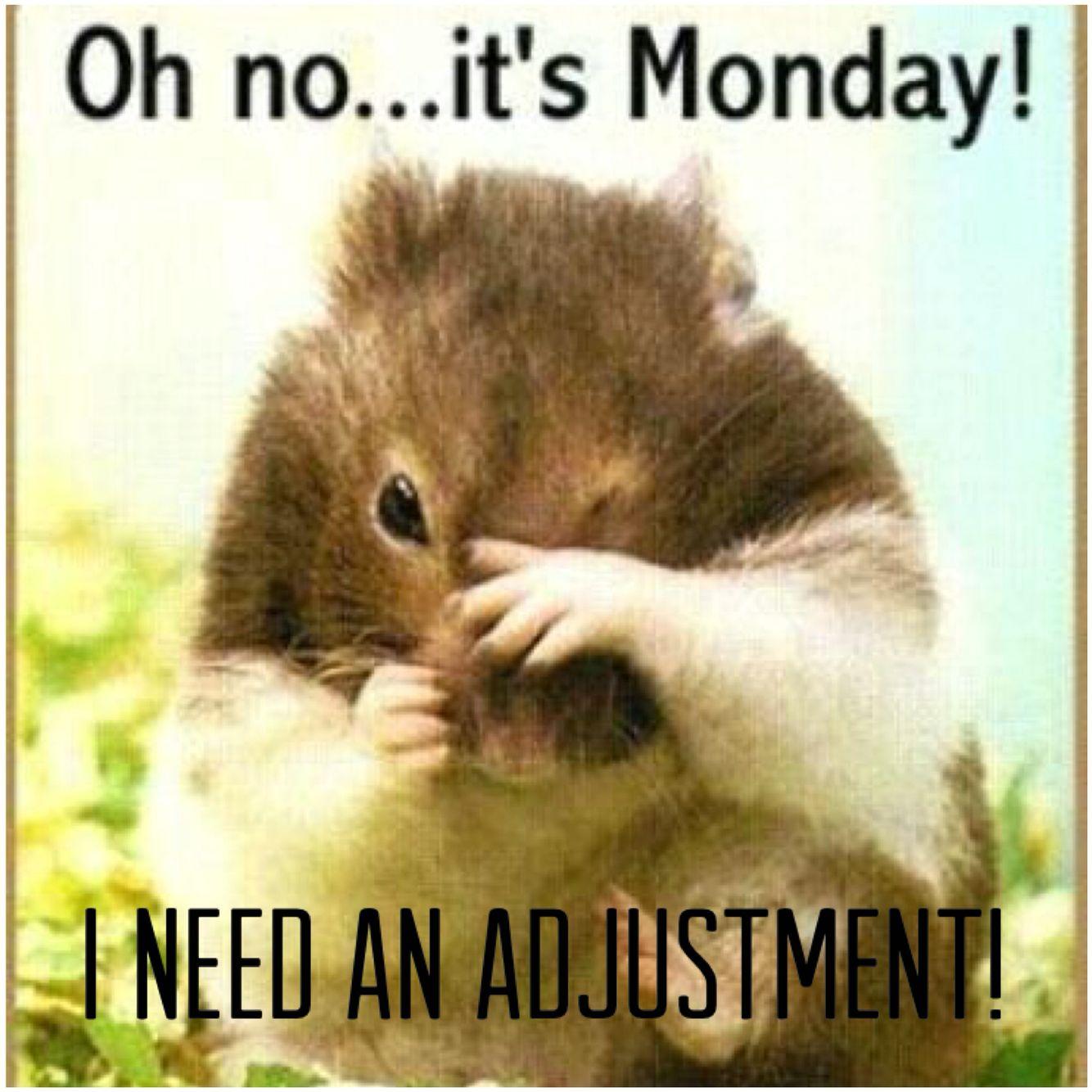 Djia Quote Pinwarren Wright On Monday's  Pinterest  Mondays