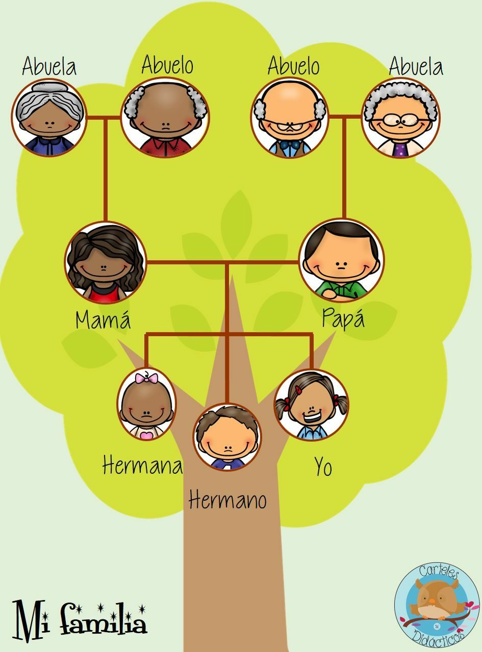 family trees in spanish - 720×975
