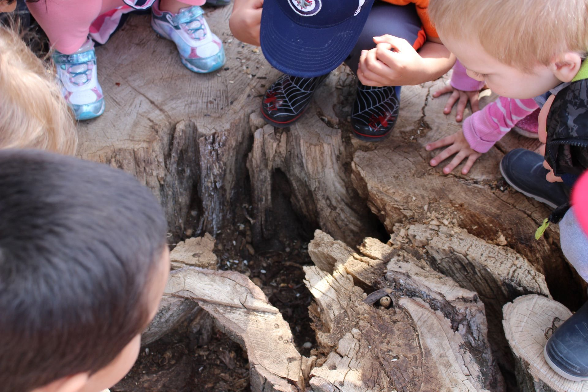 Adventure In Our Own Backyard: Fostering Sense of Place in ...