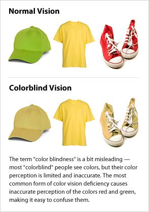 Color Blindness | Red green, Perception and Learning