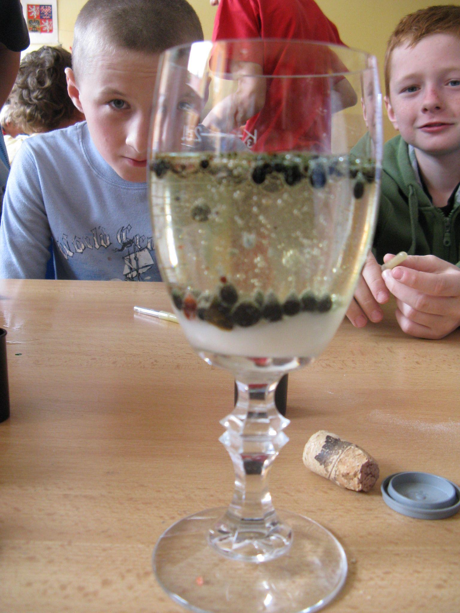 IMG_8177.jpg Šampaňské