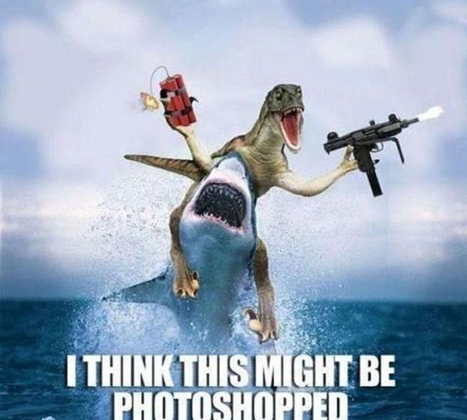 #Sharknado and shark memes take over this week. Sad news about Finn (Glee) today.