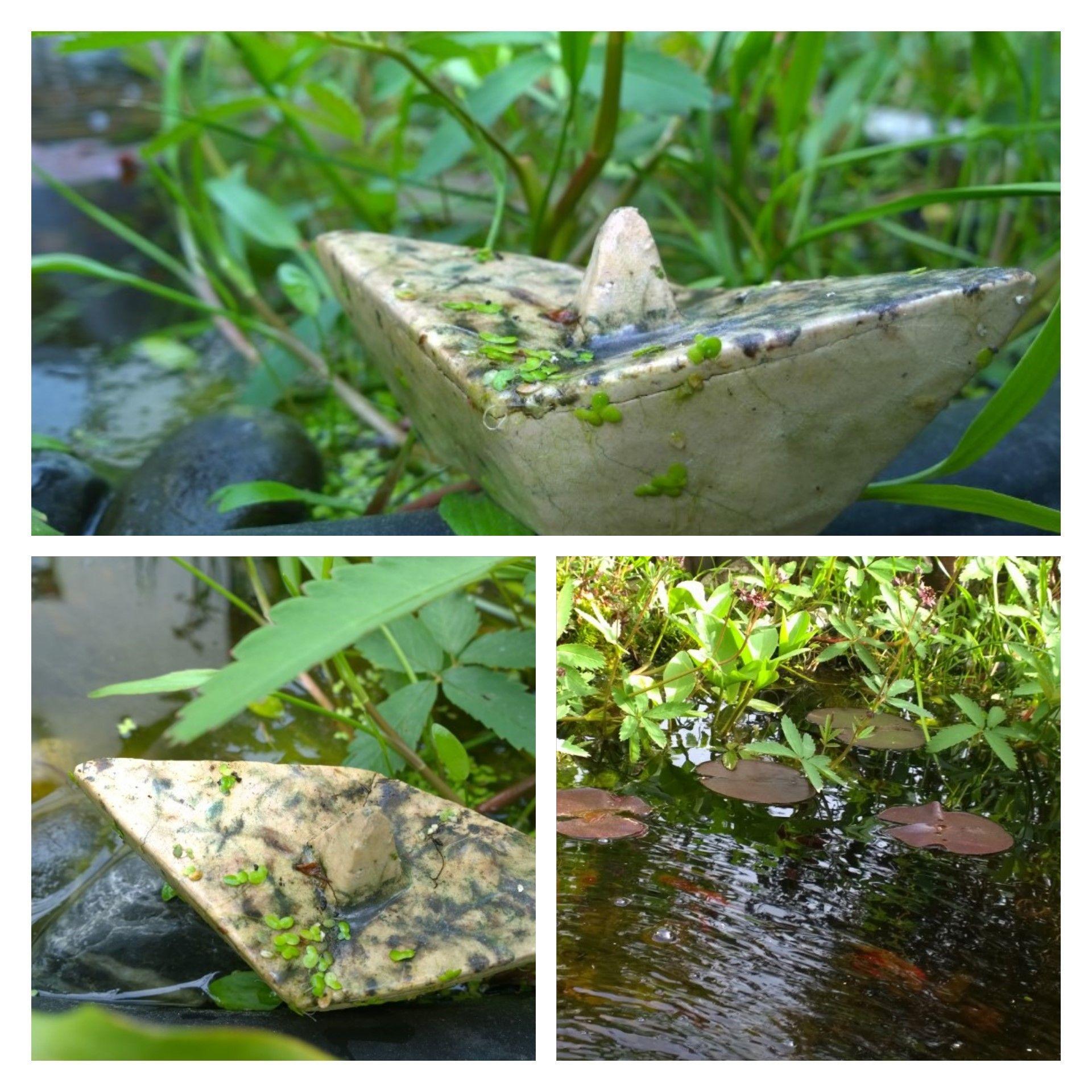 Raku-Boot im Teich