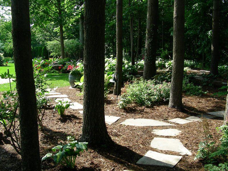 Backyard Forest backyard forest trail #pinmydreambackyard | mydreambackyard